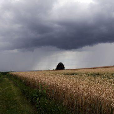 Outdoor Klausur – Projekt Sprungbrett
