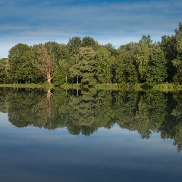 Im Fluss sein – Teamtrainings mit dem Kajak